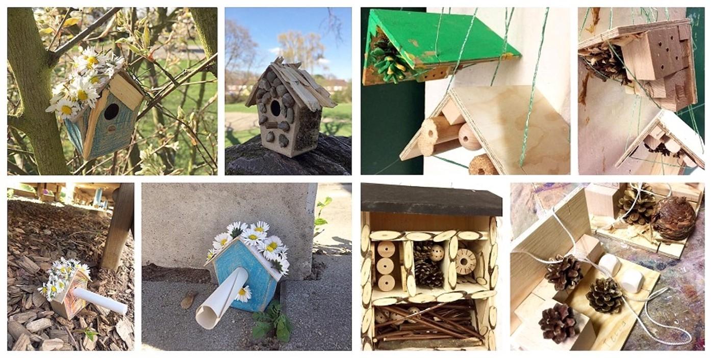 Naturprojekt-Vogelhäuser